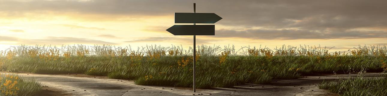 Die Straße des Erfolgs geht nicht nur gerade aus. Wie Moments of Truth die Customer Journey leiten.